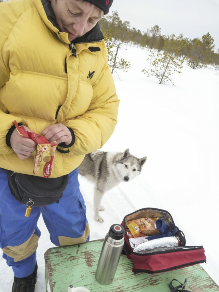 person in in thick winter clothing having Lunch break in the snow with husky